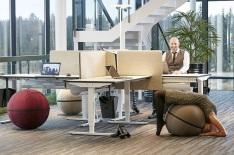 office_ballz_1.jpg
